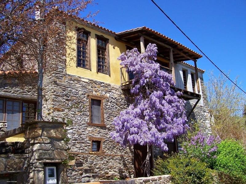 Παρθενώνας: Το άγνωστο χωριό της Χαλκιδικής που σε μαγεύει με την ομορφιά του, φωτογραφία-4