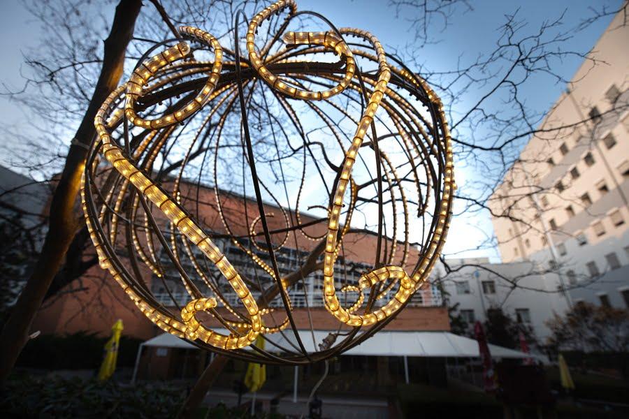 """Θεσσαλονίκη: Εντυπωσιακός ο χριστουγεννιάτικος διάκοσμος στο """"Παπαγεωργίου"""" – Δωρεές ελάτων και στολιδιών (φωτο), φωτογραφία-3"""